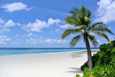 Urlaubsanspruch ist vererbbar